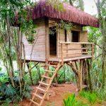 Casa suspensa em eucalipto